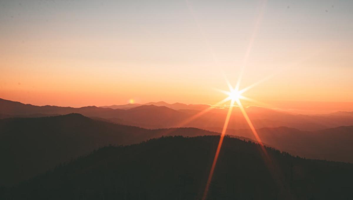 タロットカード太陽のカードの意味画像2
